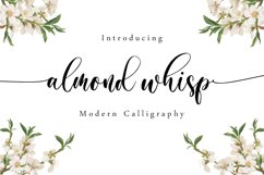 Almond Whisp - Modern Calligraphy Product Image 1