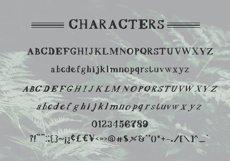 Scrawny Eve - Hand Lettered Serif Typeface Product Image 2