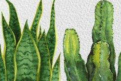 Watercolor Indoor Plants Clip Art Set Product Image 5