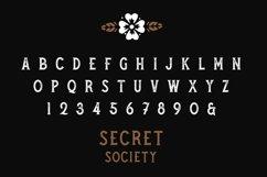 SECRET SOCIETY - A Vintage Serif Product Image 4