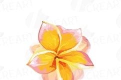 Watercolor wild flowers clip art pack, exotic watercolor flowers valentine clip art. Eps, png, jpg, svg,  vector files included. Part 1/2 Product Image 3