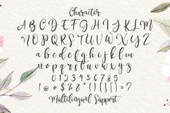 Rantliyer - Modern Calligraphy Font Product Image 5
