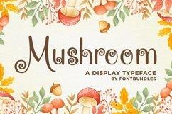 Web Font Mushroom Product Image 1