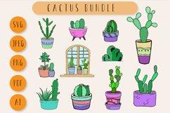 Cactus Bundle Product Image 1