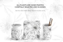 Botanical Brushes for Photoshop Product Image 4