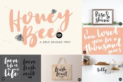 Hand Lettered Font Bundle by Dixie Type Co. Product Image 4