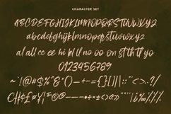 Cashwoots Handwritten Font Product Image 3