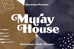 Muray House Handdrawn Font Extras Product Image 1