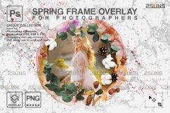Spring flower digital frames overlay Easter Product Image 6