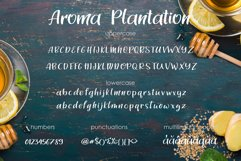 Aroma Plantation-font duo Product Image 4