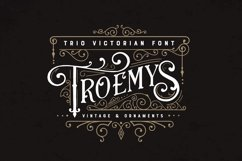 Troemys Font Trio and extras Product Image 1