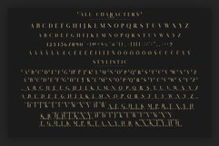 Salvalyn - Stylistic Serif Font Product Image 4
