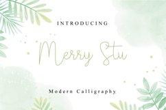 Merry Stu Product Image 1