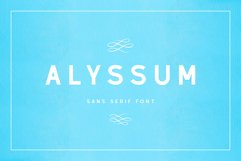 Alyssum - Sans Serif Font Product Image 1