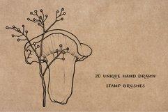 Mushroom Procreate Brushes - Stamp Brushes - Hand Drawn Product Image 2