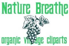 Nature Breathe Product Image 1