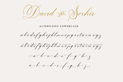 David and Sovhie - Elegant Calligraphy Font Product Image 5
