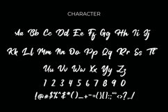 Tersanjung Modern Script Brush Font Product Image 6