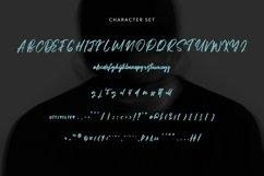 Web Font Litterbag - Fancy Script Font Product Image 6