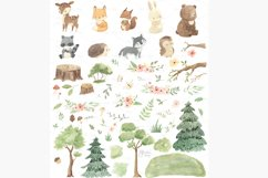 WOODLAND ANIMALS. Watercolor clipart Product Image 2