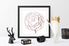 Carnation Clipart Flower Product Image 3