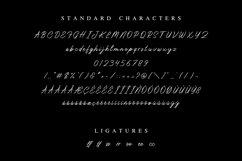 Don Carlitto - Elegant Signature Font Product Image 2