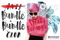 Steady Bonanza Multistyle Fonts Product Image 1