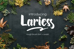 Lariess - Brush Font With Swashes Product Image 1