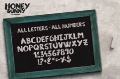 Honey Bunny Script Typeface Product Image 2