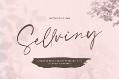 Sellviny - Handwritten Font Product Image 1