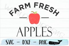 Farm Fresh Apples- Fall, Thanksgiving, Autumn, Halloween Product Image 2