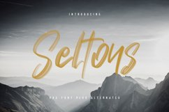 Seltons - SVG Font Product Image 1