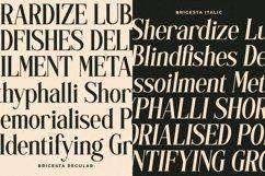 Brigesta - Serif Display Font Product Image 6