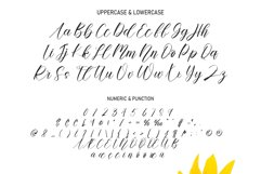 Sunflower In Summer | handwritten font Product Image 2