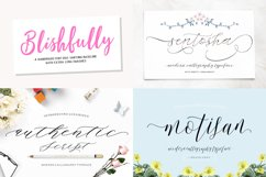 HANDWRITTEN FONTS COLLECTION Product Image 4