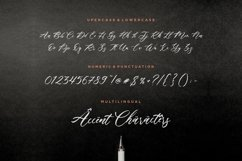 Fallout Modern Calligraphy Font Product Image 6
