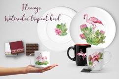Tropical flamingo clipart - watercolor birds Product Image 5