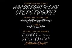 Blacklist - Modern script Font Product Image 6