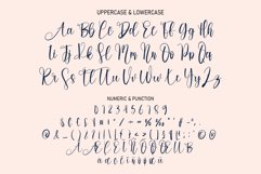 Melody Vintage | handwritten font Product Image 3