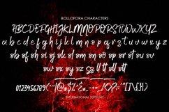 Bollofora - Brush Font Product Image 5