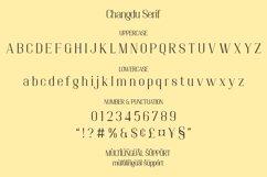 Changdu - A Modern Serif Font Product Image 4