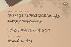 Sofia Carolyn Modern Monoline Script Font Product Image 6