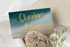 Web Font Summer Spirit - Beauty Handwritten Font Product Image 3