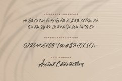 Oleandro Modern Calligraphy Font Product Image 6