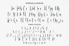 Wedding In Farmhouse   handwritten font Product Image 3