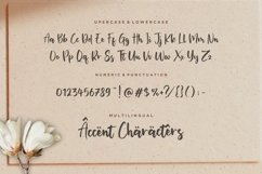 Miguelito Modern Handwritten Font Product Image 6
