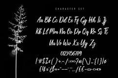 Bollifia Handwritten Script Font Product Image 5