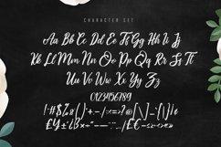 Asttuty Beauty Script Font Product Image 5