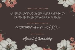 Luckangle Monoline Script Font Product Image 6