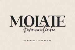 ROLATE Ligature Serif Typeface Product Image 6
